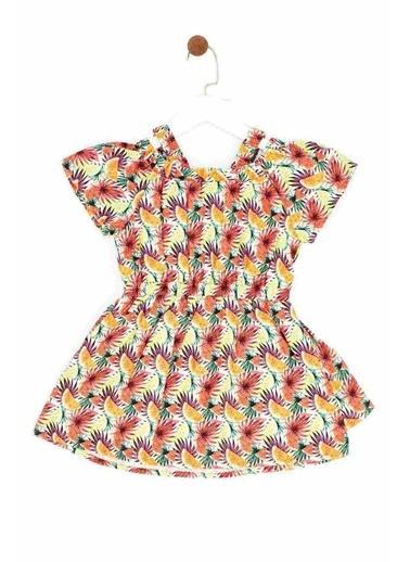 BG Baby Kız Bebek Desenli Elbise 19SS2BG2922 Renkli